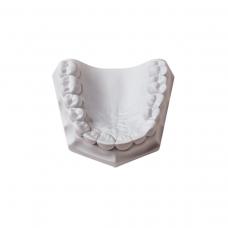 Orthodontic Stone White